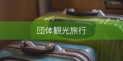 団体観光旅行